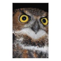 Eli - Great Horned Owl V Stationery