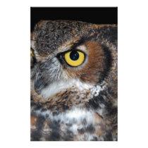 Eli - Great Horned Owl VI Stationery