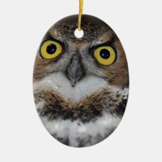 Eli - Great Horned Owl VII Ceramic Ornament