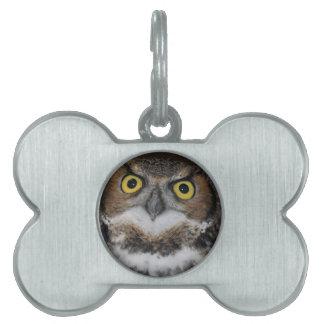 Eli - Great Horned Owl VII Pet ID Tag