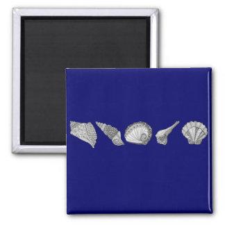 Elija su arte del Seashell del color Imán Cuadrado
