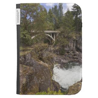 Elimine las plantas débiles el río y el puente, pe