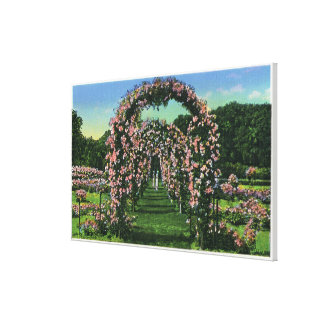 Elizabeth Park View of the Rose Arches Gallery Wrap Canvas