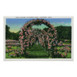 Elizabeth Park View of the Rose Arches Print