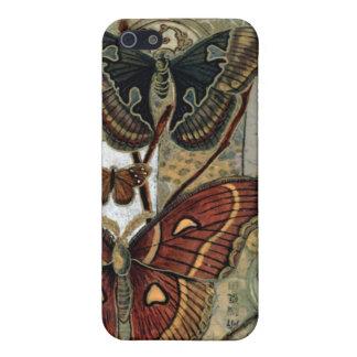 Elizabeth Van Riper-Moth Milieu iPhone 5 Cover