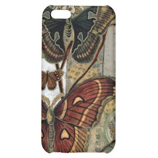 Elizabeth Van Riper-Moth Milieu iPhone 5C Covers