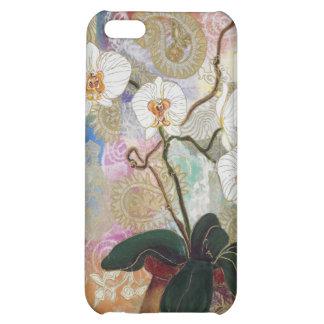 Elizabeth Van Riper-Patchwork Phalie Case For iPhone 5C