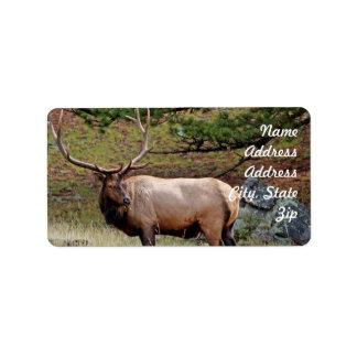 Elk Address Sticker Address Label