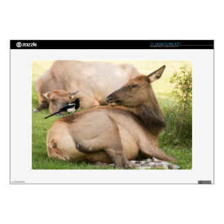 Elk and Bird Laptop Skin