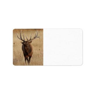 elk and eye bulging label