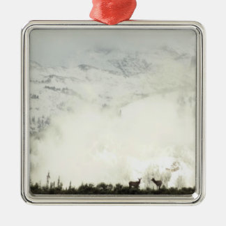 Elk at Grand Teton National Park Photography Metal Ornament
