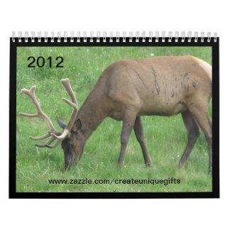Elk Battle Scars 2012 Calendar