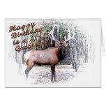 Elk birthday-customize greeting card