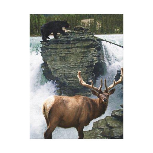 Elk, Black Bears & Waterfall Wildlife Art Print Gallery Wrapped Canvas