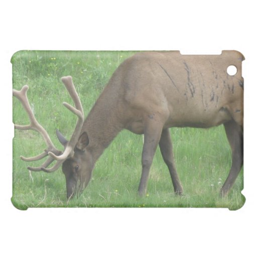 Elk Ble scars  Cover For The iPad Mini