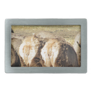Elk Booty Belt Buckle