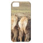 Elk Booty iPhone 5C Cases