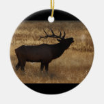 elk bugle and steam Double-Sided ceramic round christmas ornament