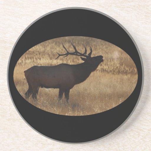 elk bugle drink coaster