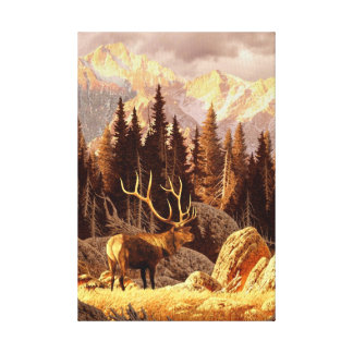 Elk Bull Canvas Print