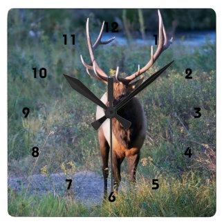 Elk Bull Deer Wall Clock