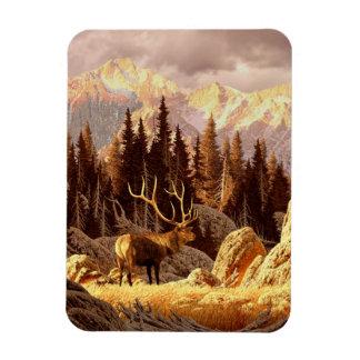 Elk Bull Rectangular Photo Magnet