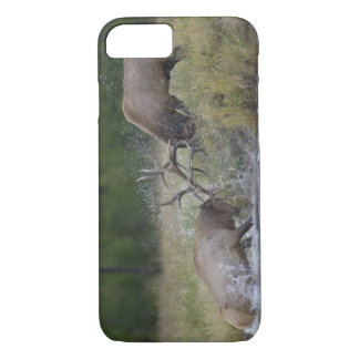 Elk Bulls fighting, Yellowstone NP, Wyoming iPhone 8/7 Case