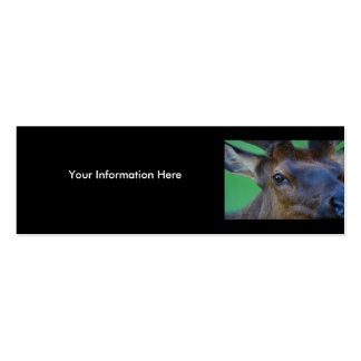 elk Double-Sided mini business cards (Pack of 20)
