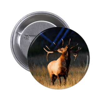 elk buttons