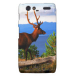 Elk by Yellowstone Lake Droid RAZR Cases
