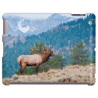Elk (Cervus Elephus) Bull Bugling