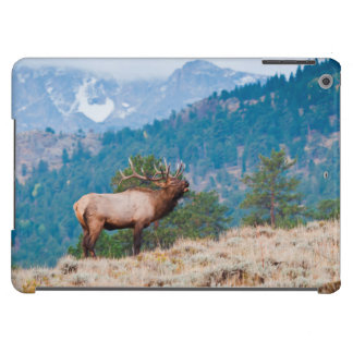 Elk (Cervus Elephus) Bull Bugling iPad Air Cases
