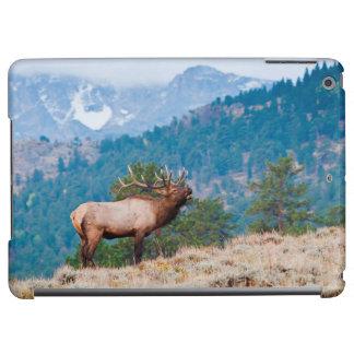 Elk (Cervus Elephus) Bull Bugling iPad Air Cover