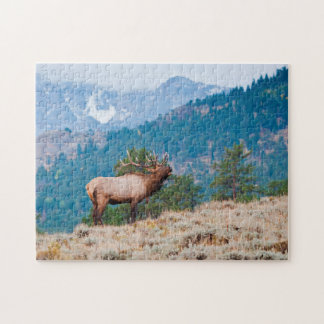 Elk (Cervus Elephus) Bull Bugling Jigsaw Puzzle
