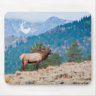 Elk (Cervus Elephus) Bull Bugling Mouse Pad