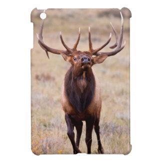 Elk (Cervus Elephus) Bull Herding Harem Cover For The iPad Mini
