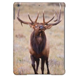 Elk (Cervus Elephus) Bull Herding Harem iPad Air Cases