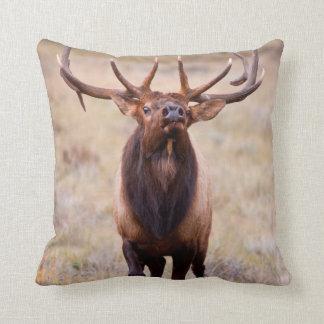 Elk (Cervus Elephus) Bull Herding Harem Pillow