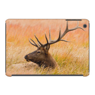 Elk (Cervus Elephus) Resting In Meadow Grass iPad Mini Retina Cases