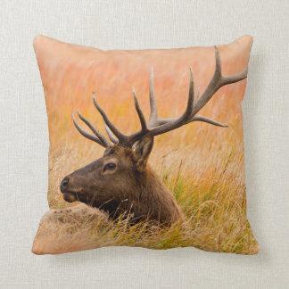 Elk (Cervus Elephus) Resting In Meadow Grass Throw Pillow