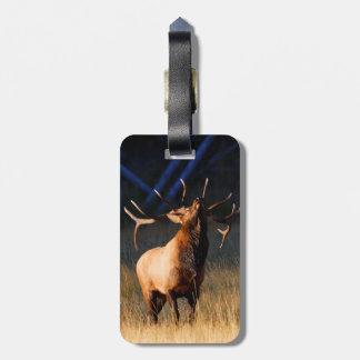 Elk Charging Luggage Tag