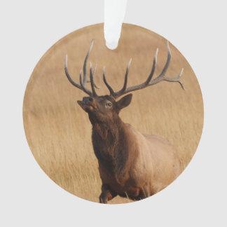 elk charging ornament