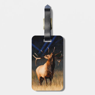 Elk Charging Tag For Luggage