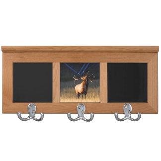 Elk Coat Racks