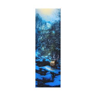 Elk Creek Canvas Print