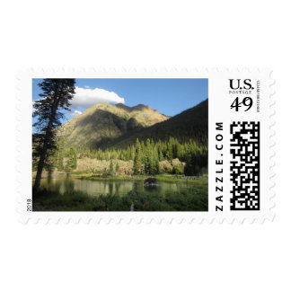 Elk Creek Moose - Weminuche Wilderness - Colorado Stamp
