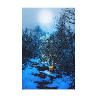 Elk Creek too Canvas Print