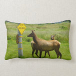 Elk Crossing California Wildlife Lumbar Pillow