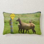 Elk Crossing California Wildlife Pillow