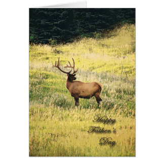 Elk Father's Day Greeting Cards